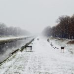 Danas prava zimska idila u Pirotu, slede ledeni dani