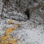 Lovci u Babušnici redovno prihranjuju divljač