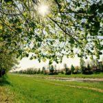 Proleće na Keju pored Nišave