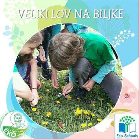 """Photo of OŠ """"Sveti Sava"""" učestvuje u projektu """"Veliki lov na biljke"""""""