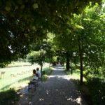 Narednih dana tropske temperature, u subotu u Pirotu 40 stepeni