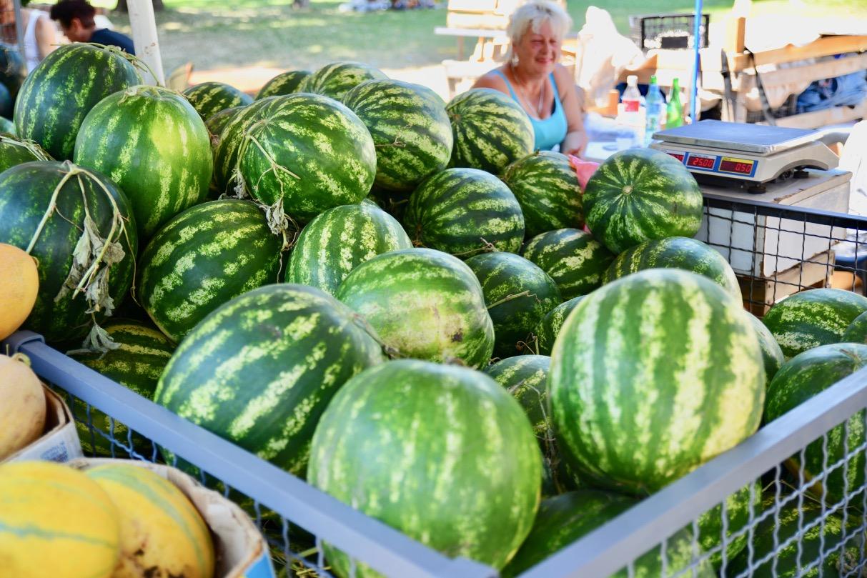 Photo of Nišavski brzaci ponovo puni kupača, a tu su i lubenice – prava letnja poslastica