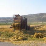 Počinje žetva na 10.000 hektara u Pirotskom okrugu