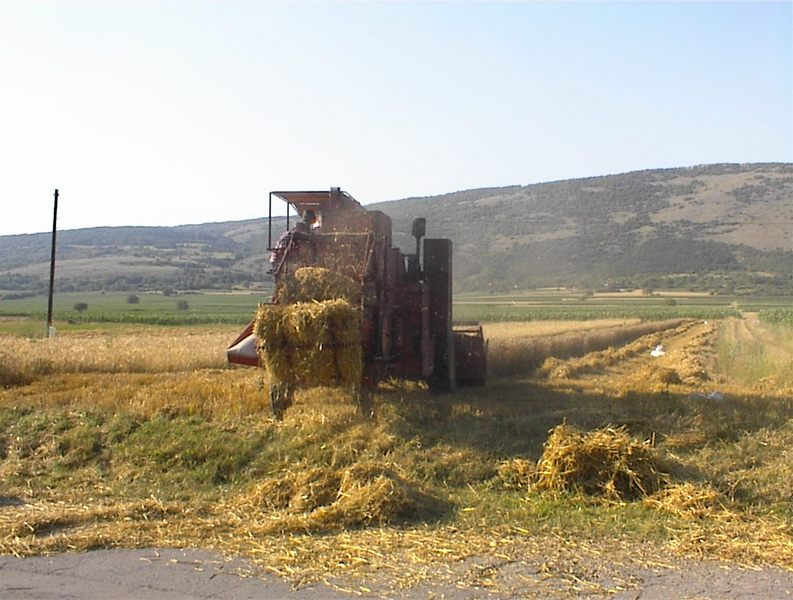 Photo of Počinje žetva na 10.000 hektara u Pirotskom okrugu
