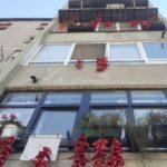 Ništa bez pirotskih punjenih paprika - zacrvenele se fasade zgrada