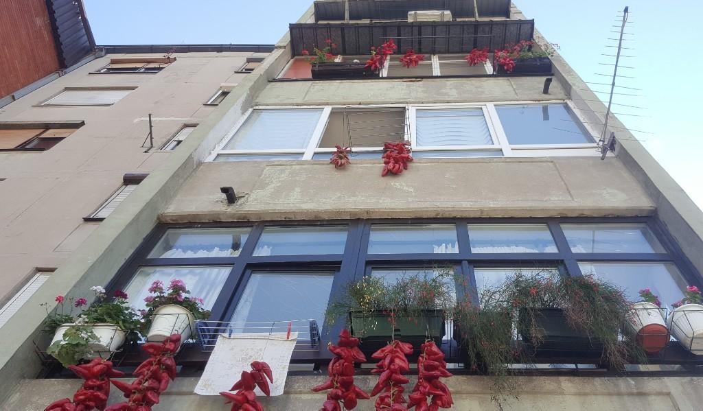 Photo of Ništa bez pirotskih punjenih paprika – zacrvenele se fasade zgrada
