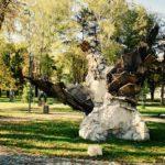 Park na Kaleu - novi biser Pirota (foto)