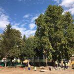 Za uređenje škola 200 miliona dinara, rekonstruišu se i Gimnazija i Sveti Sava