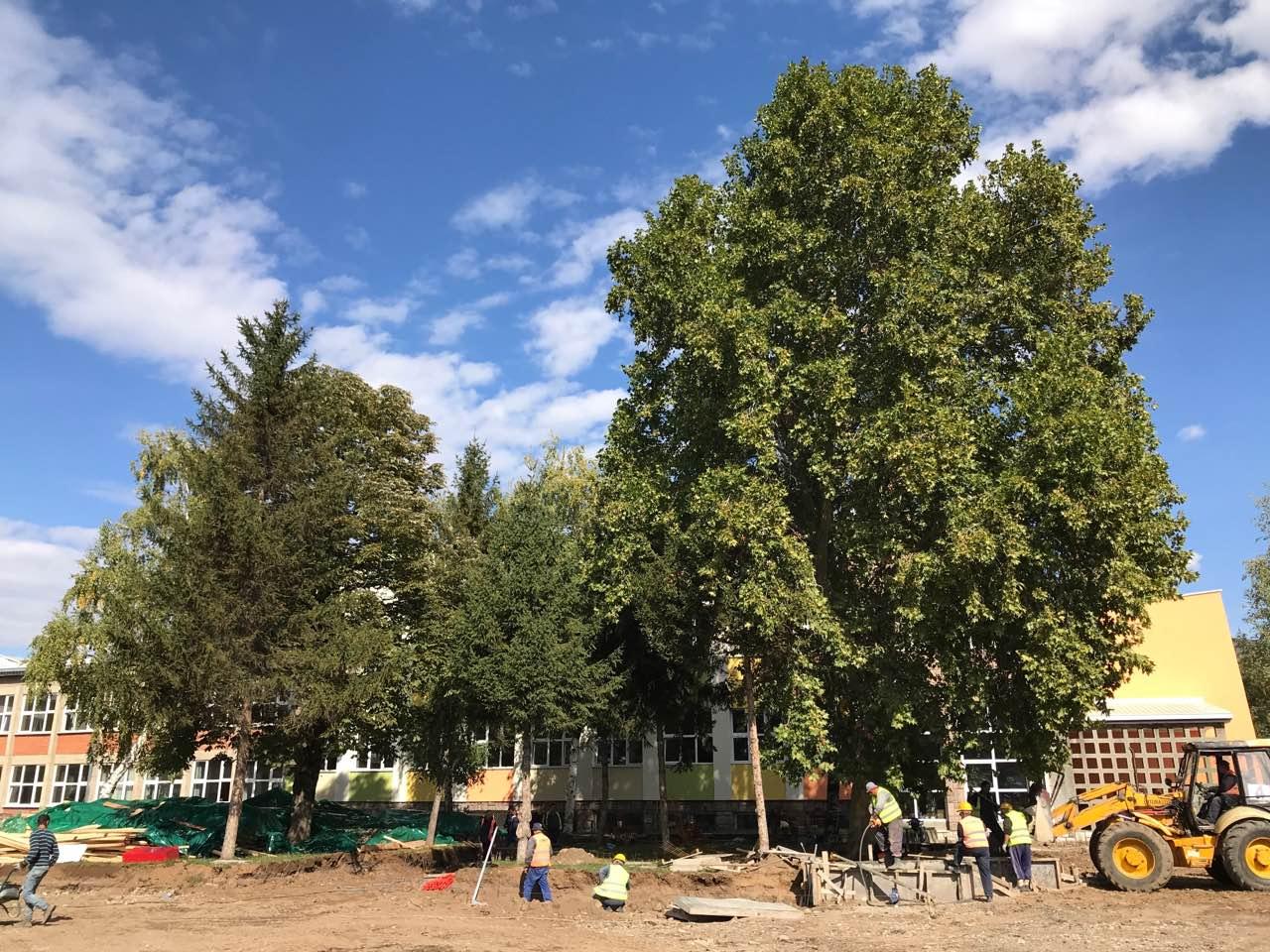 Photo of Za uređenje škola 200 miliona dinara, rekonstruišu se i Gimnazija i Sveti Sava