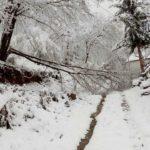 U babušničkom selu Vrelo palo četvrt metra snega, selo bez struje i veze sa svetom