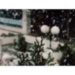Zima se ne predaje