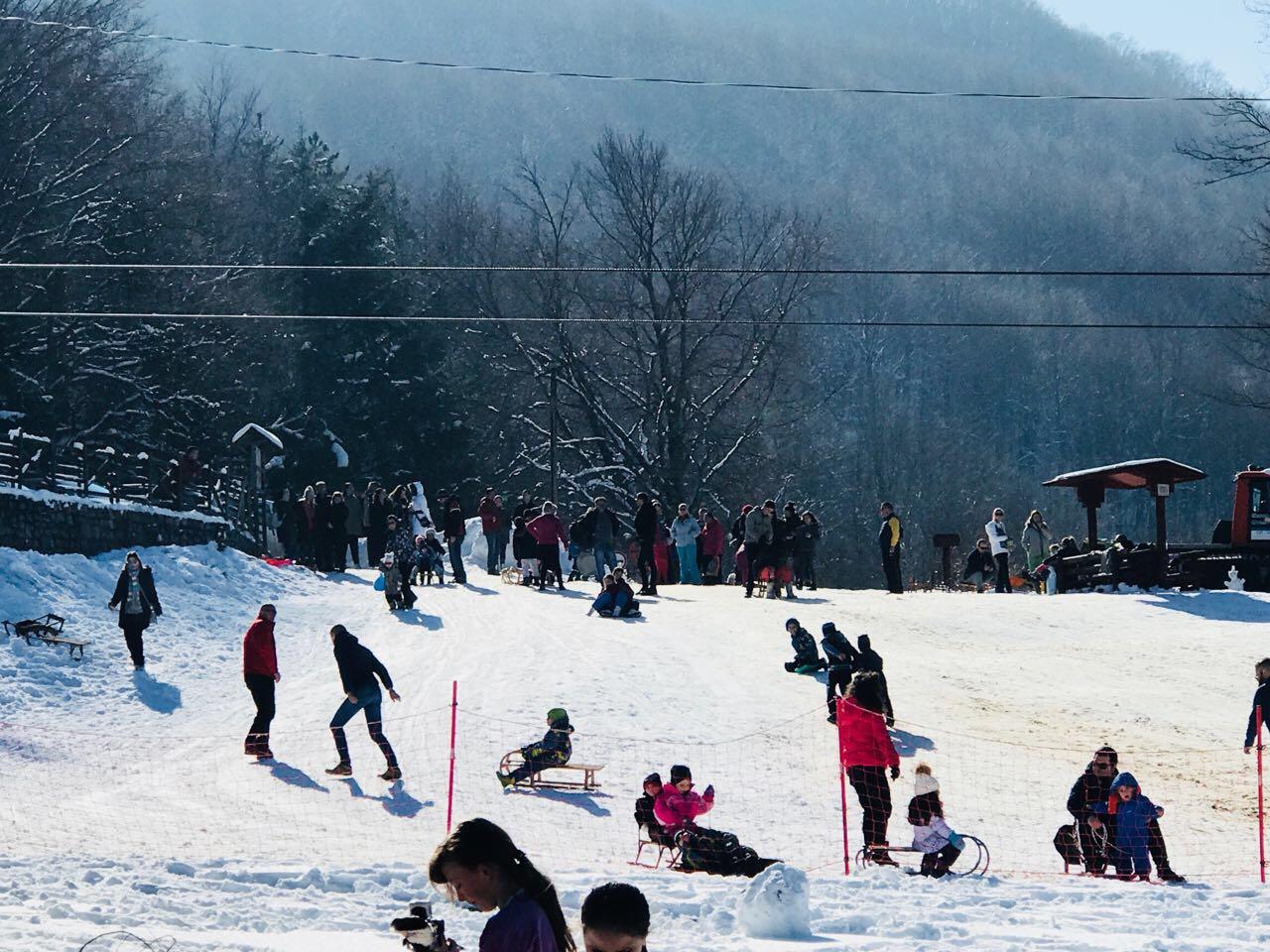 Photo of Na Gradskom skijalištu kao u košnici