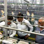Vasić: Impresioniram sam fabrikom Mirolja u Bugarskoj