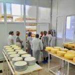 Kačkavalj Mlekarske škole oduševio delegaciju Ministarstva poljoprivrede Albanije