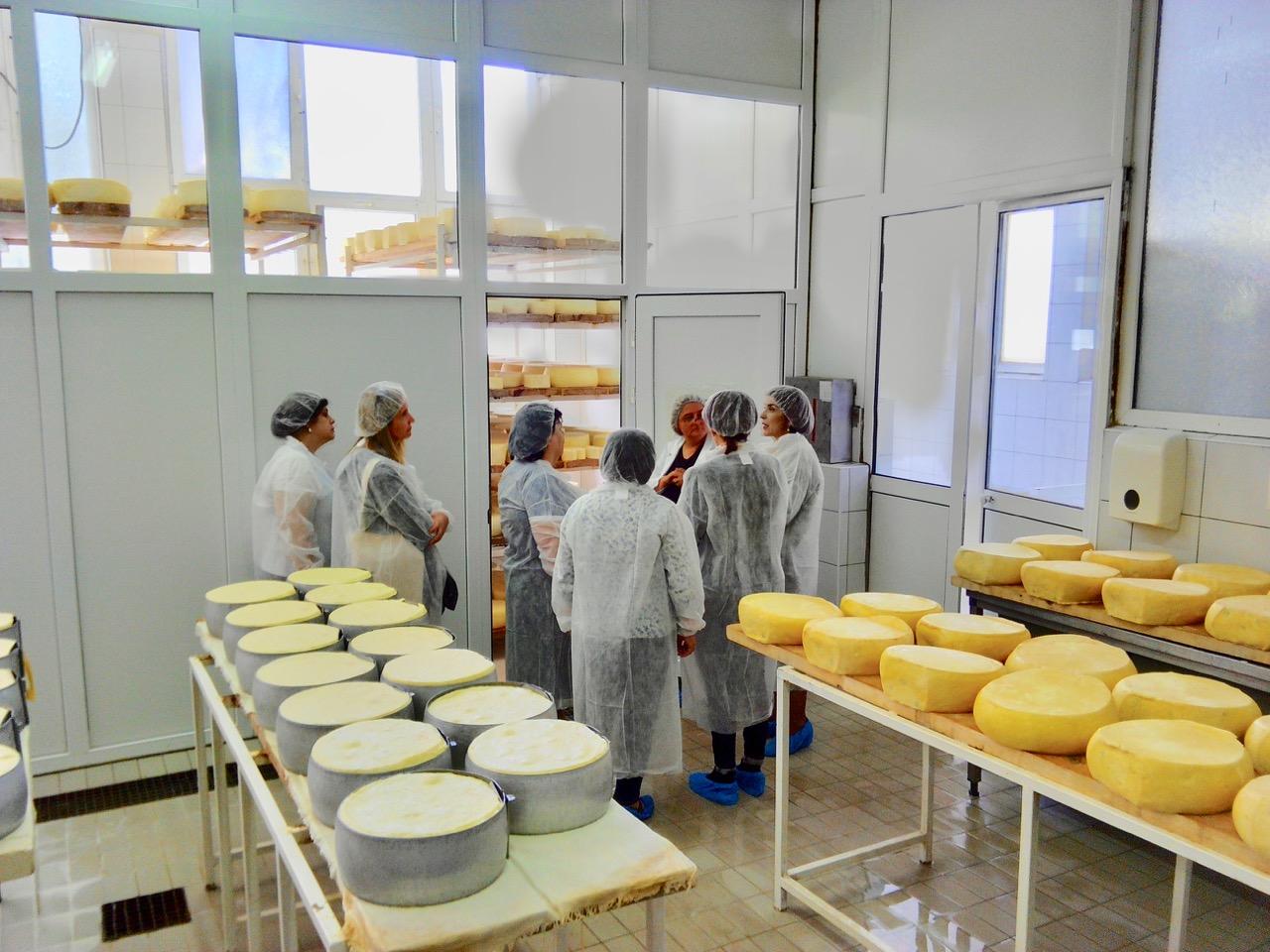 Photo of Kačkavalj Mlekarske škole oduševio delegaciju Ministarstva poljoprivrede Albanije