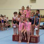 Pirotski gimnastičari veoma uspešni na Državnom prvenstvu u Novom Sadu