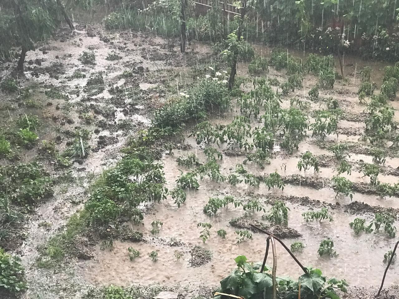 Photo of Jako nevreme u Pirotu i okolini