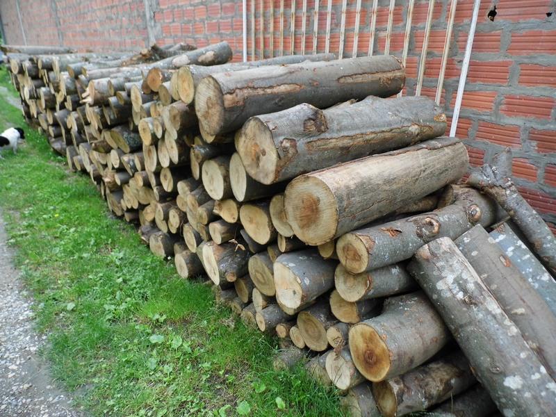 Photo of Nesreća u pirotskom selu Šugrin:Poginuo drvoseča