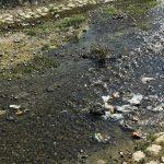 Sutra akcija čišćenja korita Gradašničke reke