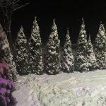 Pao prvi sneg u Pirotu (Foto)