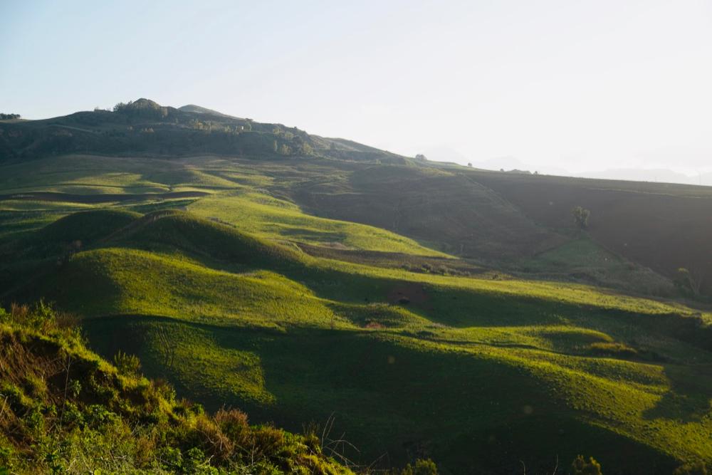 Photo of Sicilija: Pirotski poljoprivrednici posetili farme ovaca, krava, pogodne za preradu mleka
