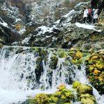 Dag banjica - idealno mesto za šetnju i uživanje čak i tokom zimskih meseci