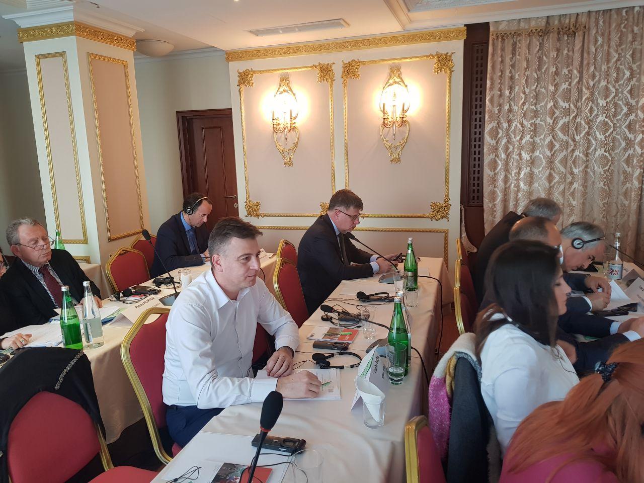 Photo of Vasić na sastanku Monitoring komiteta Saveta Evrope