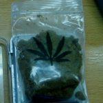Na Gradini marihuana među ćevapima i kolekcija pića u gepeku