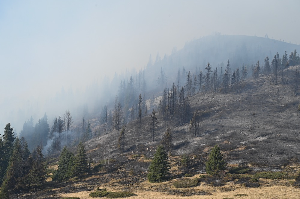 Photo of Bugarske vlasti: Požar na Staroj planini trenutno najveći u Evropi. Požar na preko 4.000 hektara u Srbiji i Bugarskoj