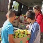 """Školarci iz OŠ """"8. septembar"""" prikupili velike količine voća i povrća za korisnike narodne kuhinje"""