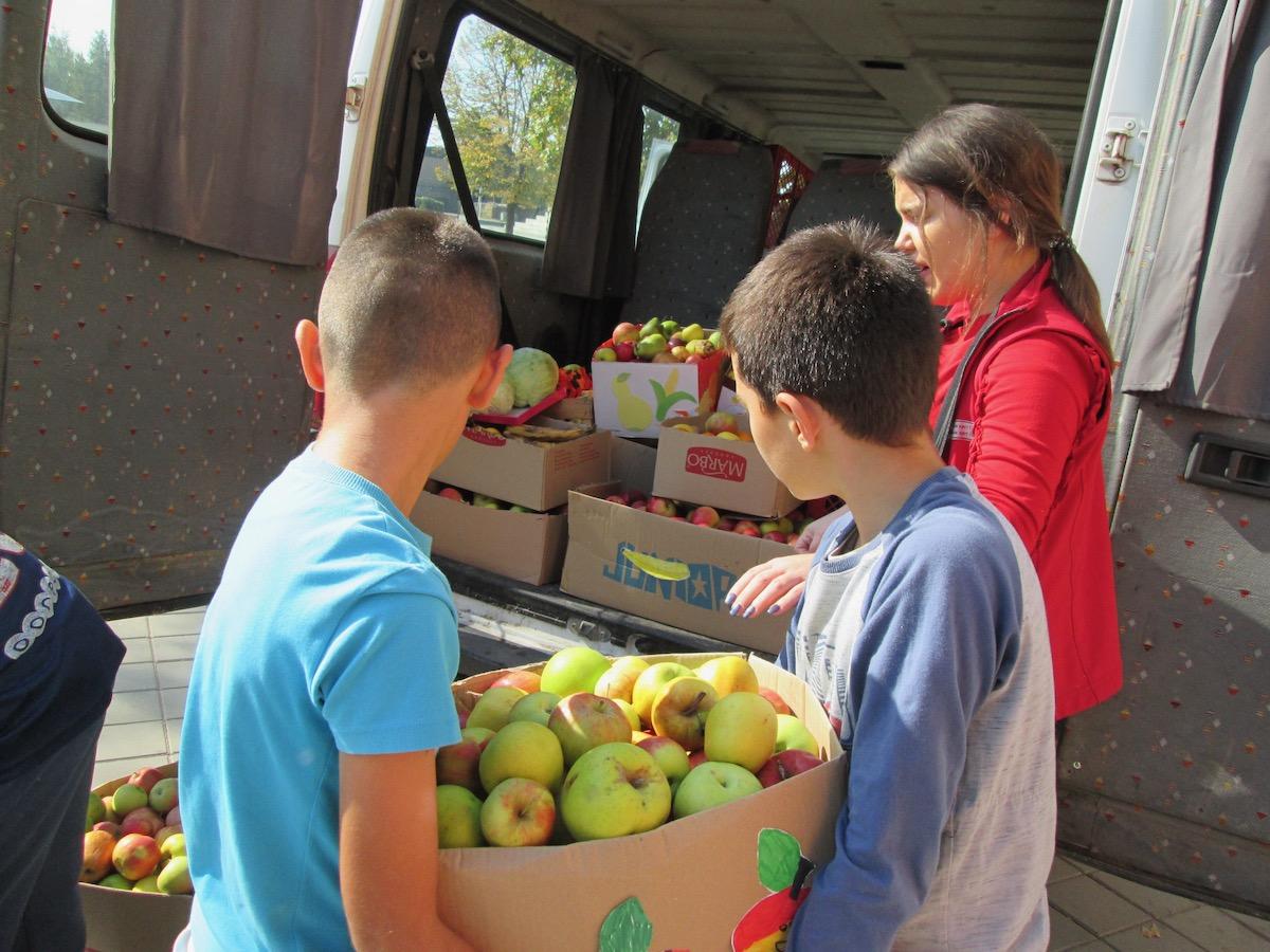 """Photo of Školarci iz OŠ """"8. septembar"""" prikupili velike količine voća i povrća za korisnike narodne kuhinje"""