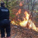 MUP Srbije: Situacija sa požarom na Staroj planini znatno povoljnija. Kod Trgovišta evakuisani meštani