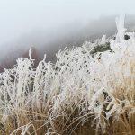 Na Staroj planini trenutno susnežica i mraz. Veliki požar pred konačnim gašenjem