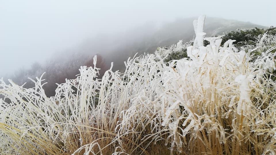 Photo of Na Staroj planini trenutno susnežica i mraz. Veliki požar pred konačnim gašenjem