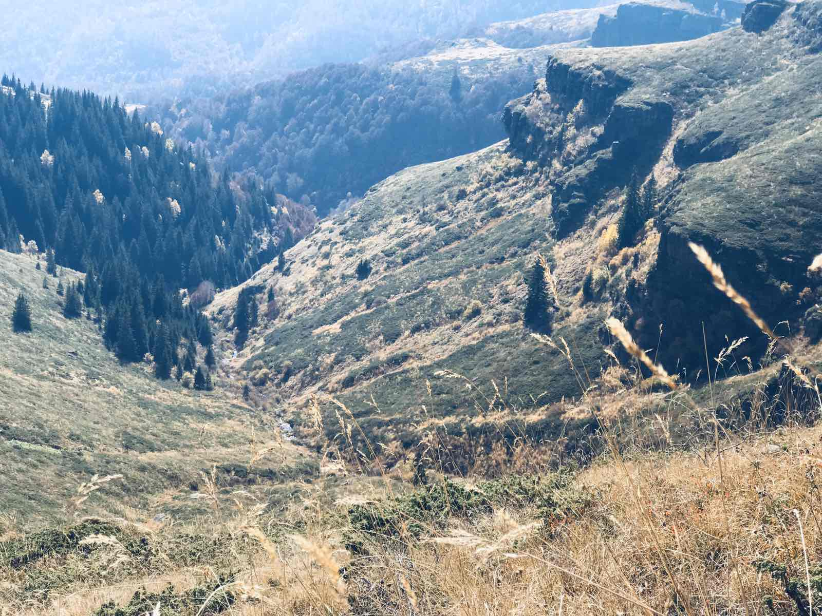 Photo of Sve o Staroj planini – edukativni filmovi profesora geografije Dragana Nikolića pravi vodič kroz prirodne lepote našeg kraja