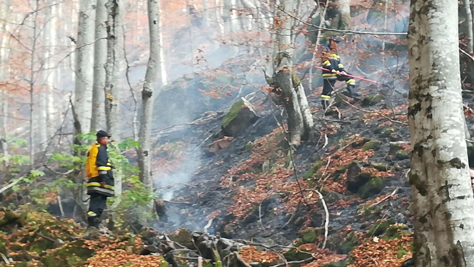 Photo of Ugašen krak požara ispod vrha Tri čuke, sve snage koncentrisane na odbranu Toplog Dola