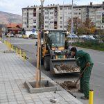 JP Komunalac: Novi drvoredi u gradu. Sadi se preko 3000 sadnica drveća i ukrasnog žbunja