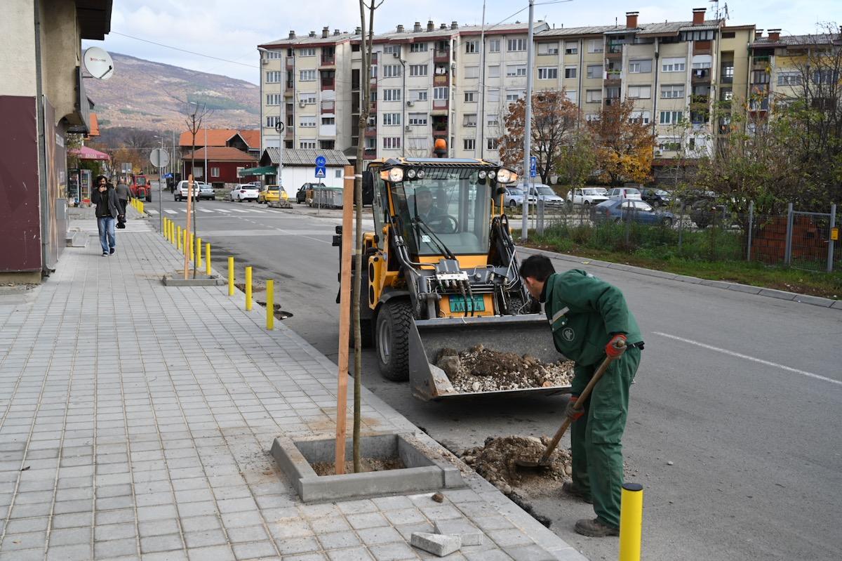 Photo of JP Komunalac: Novi drvoredi u gradu. Sadi se preko 3000 sadnica drveća i ukrasnog žbunja