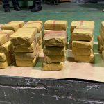 Na Gradini zaplenjeno preko 30 kilograma heroina, uhapšen bugarski državljanin