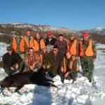 Pirotski lovci danas odstrelili osam divljih svinja