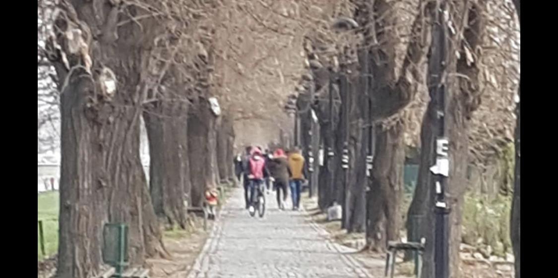 Photo of Kej danas prepun šetača, poražavajuće nepoštovanje mera socijalne distance