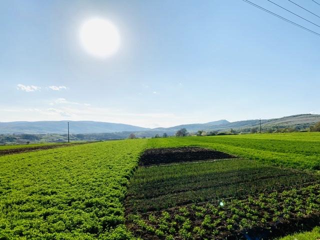 "Photo of Podsticaji za razvoj poljoprivrede od 10 do 200 hiljada evra kroz ""Razvoj konkurentnosti poljoprivrede u Srbiji"""