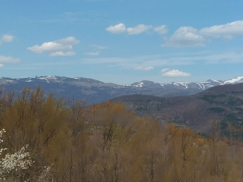Photo of Na Staroj planini  uveliko  dah proleća!