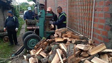 Photo of Grupa mladića iz naselja Rasadnik, cepanjem drva dopunjuje svoj porodični buđžet