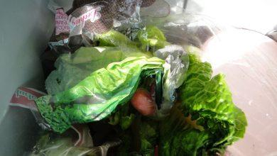 Photo of Kokain pokušali da prokrijumčare u zelenoj salati
