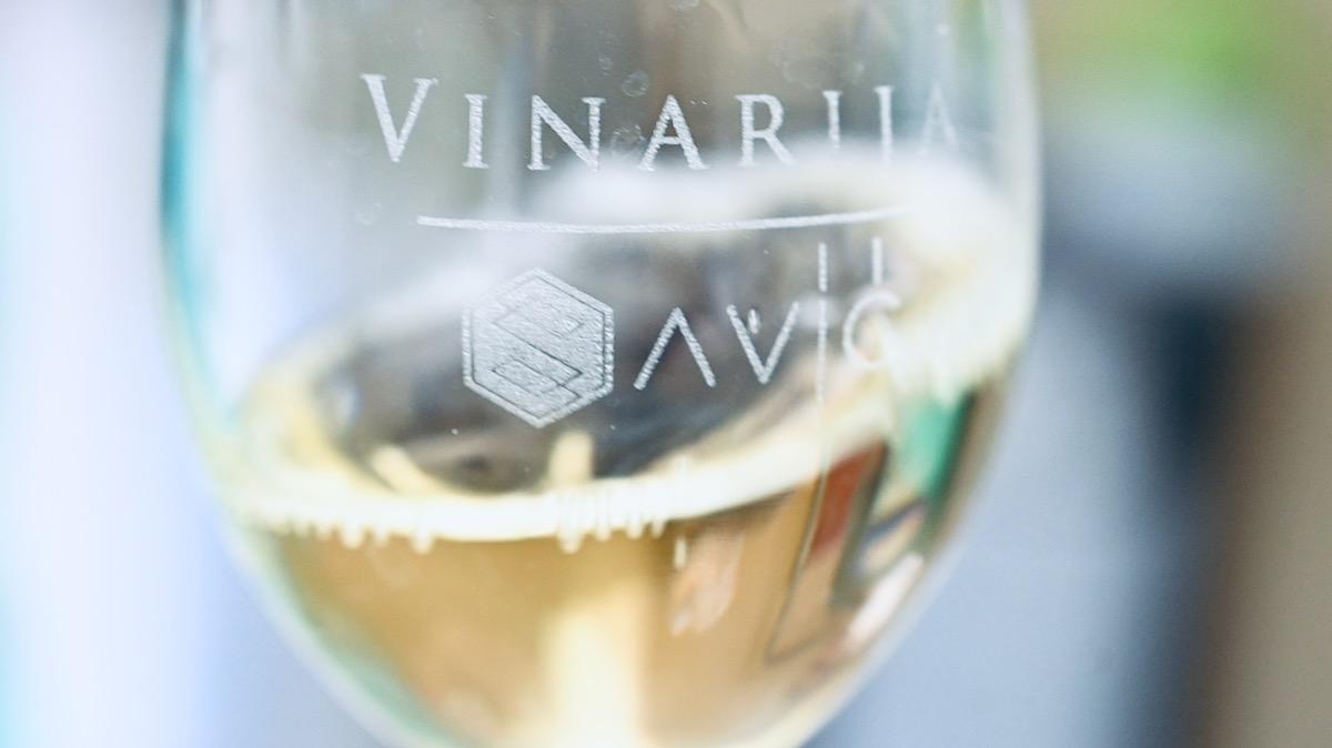 vinarija savić pirot
