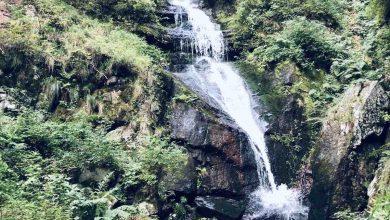 Photo of Gornji piljski vodopad na Staroj planini – biser prirode ukutkan u neverovatan krajolik
