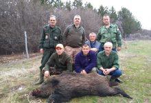 Photo of U pirotskom ataru nema novih slučajeva zaraze od Afričke svinjske kuge