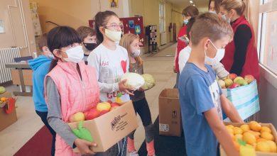 Photo of Osnovci organizovali humanitarnu akciju povodom obeležavanja Dana zdrave hrane