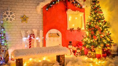 Photo of Pirotske vesti i Foto studio Glamour POKLANJAJU porodični foto sešn u novogodišnjem dekoru